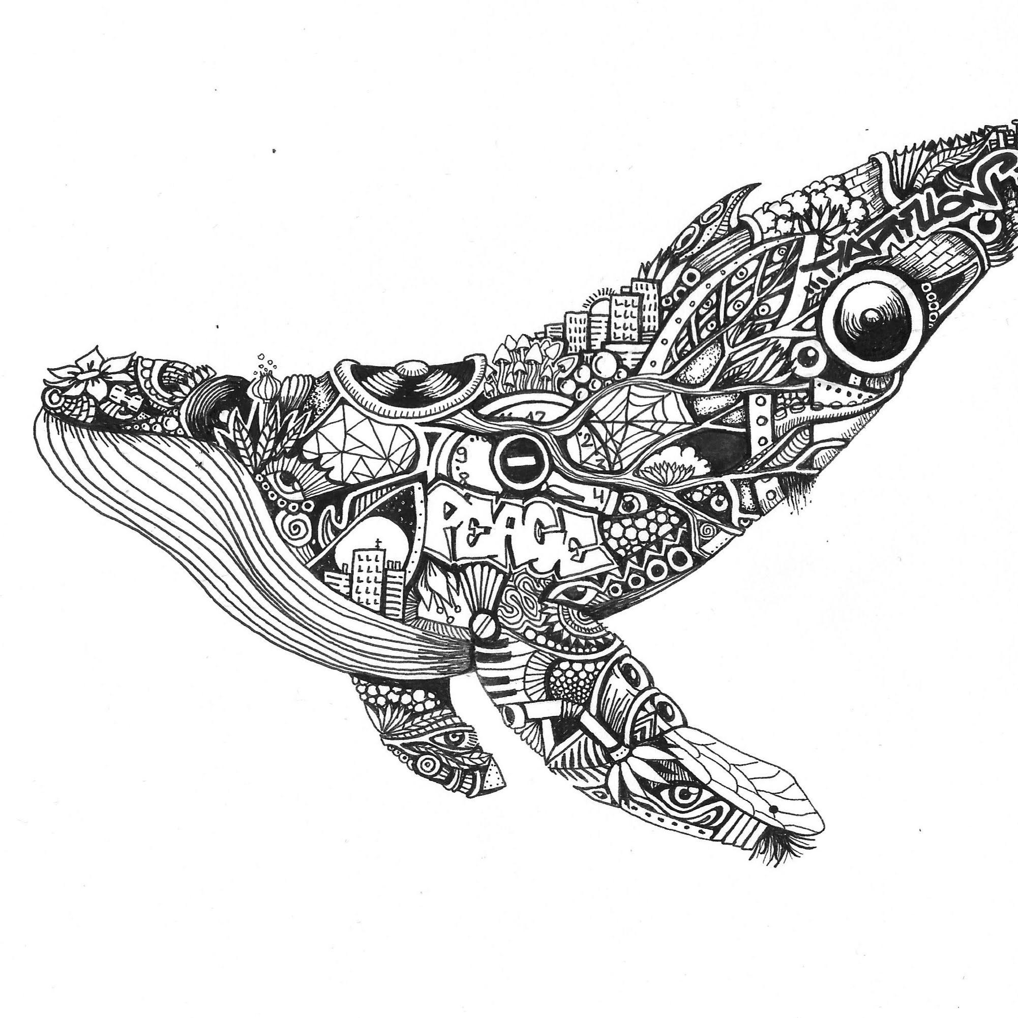 Whale (1)